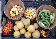 Assorted summer produce